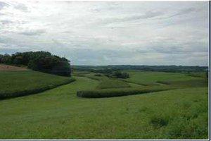 CROP Soil Conservation