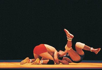 wrestling stock