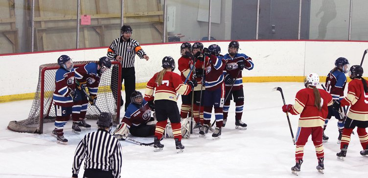 team wis hockey