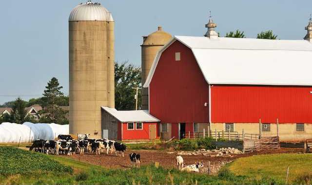 dairy meeting