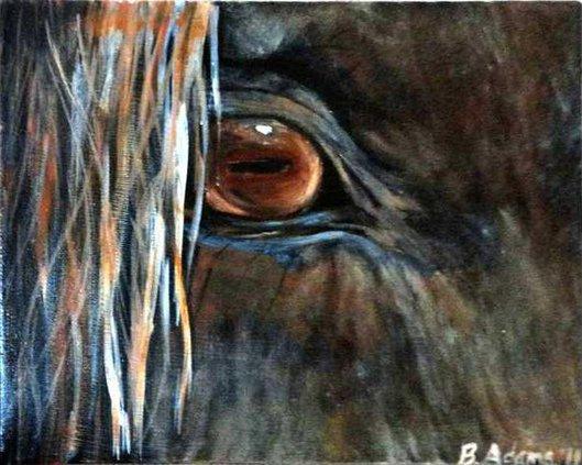 bHanley-Adams horse