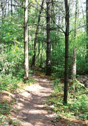 Mound View Trail