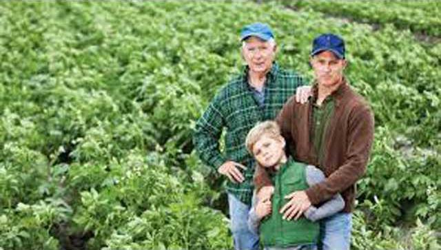 farm succession