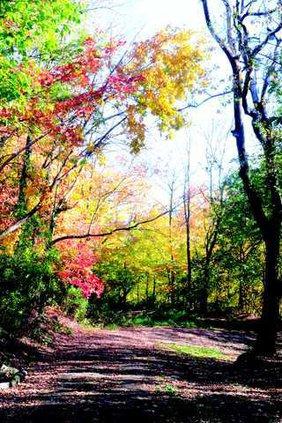 mound path