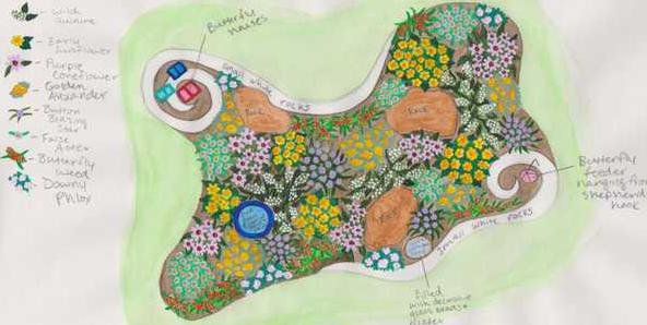 Alexis Updated butterfly garden design