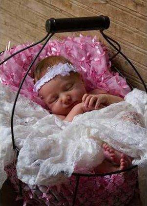 Savannah Rose web