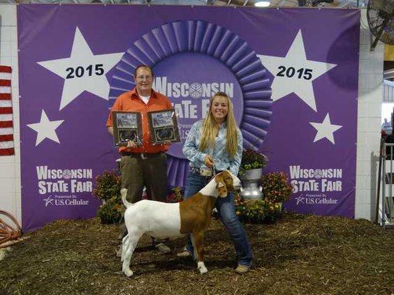 state fair goat