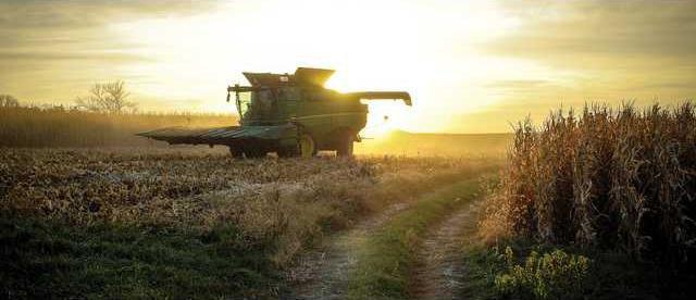 1 harvest