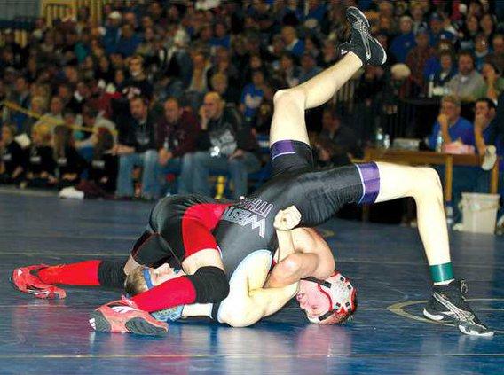 BH wrest Novak 1 color