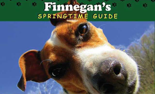 Finnegans Springtime Guide