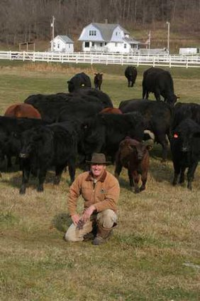 Rod Ofte w cattle