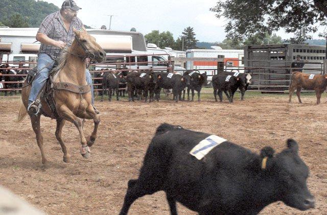 Hestetune rides