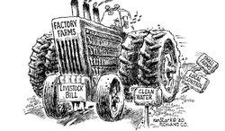 Factory Farms_Ken Stark