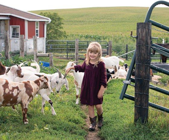 ellie makos cows