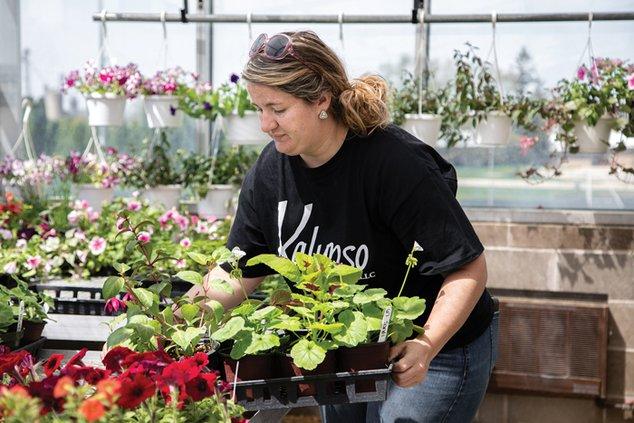 mhs ag plant sale
