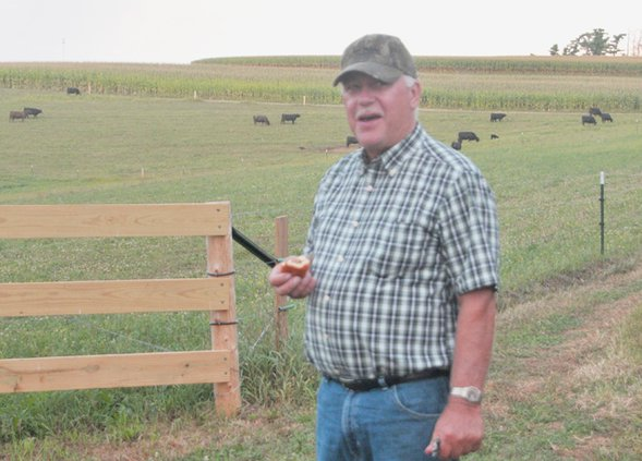 Jeff Ostrem and cattle
