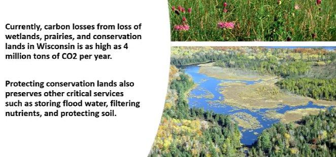 Prairies/wetlands as carbon sinks