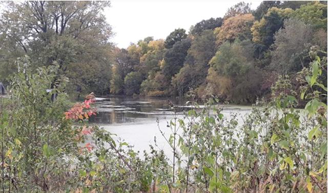 Myrtle Lake
