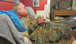 Dane and cat reading a book