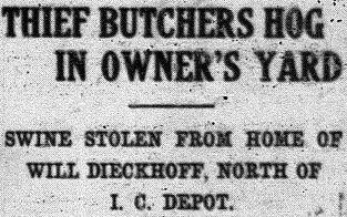 hog theft 1911
