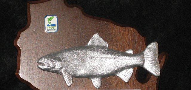 Silver Trout Award