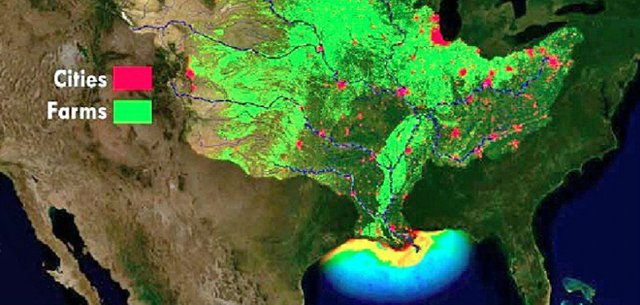 Gulf of Mexico Dead Zone
