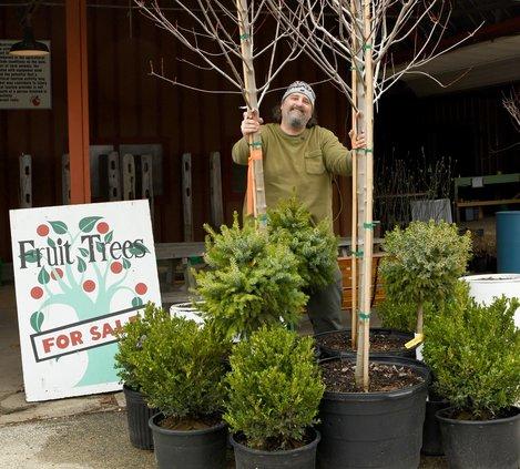 Roots to Fruits_Noel Miller
