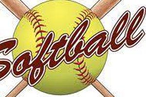 Softball Stock 2