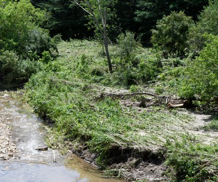 Newby Hollow Road damage