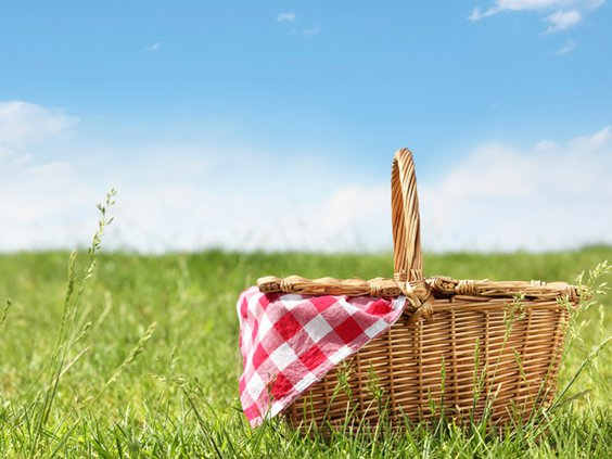 picnic stock