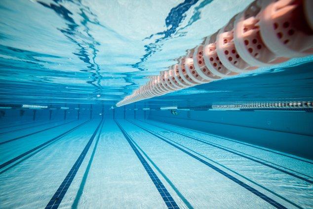 swim stock