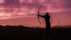bow archery stock