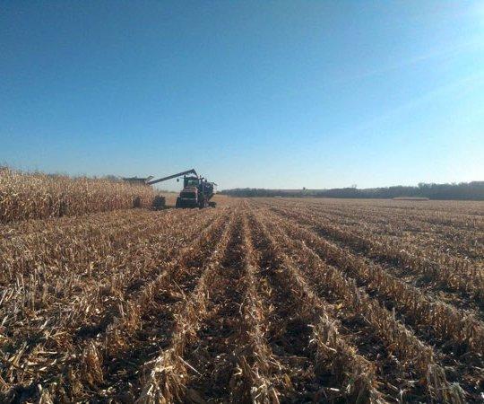 harvest stock